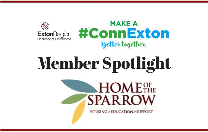Member Spotlight (home of sparrow)