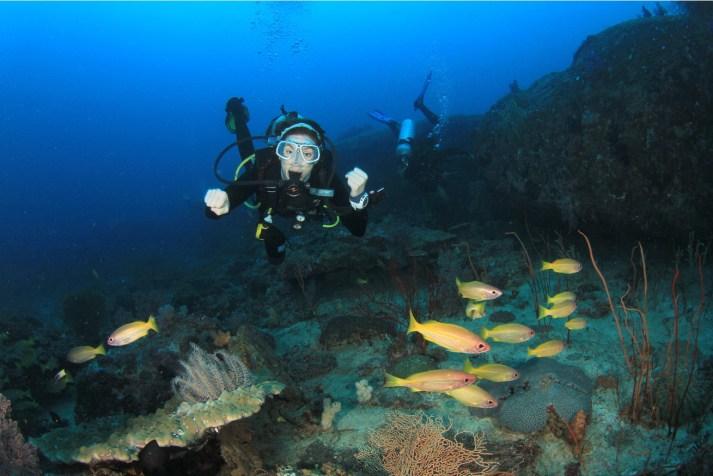 Andman Scuba Diving