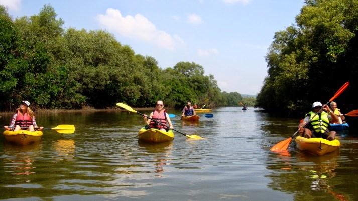Kayaking Allepeay BackWater