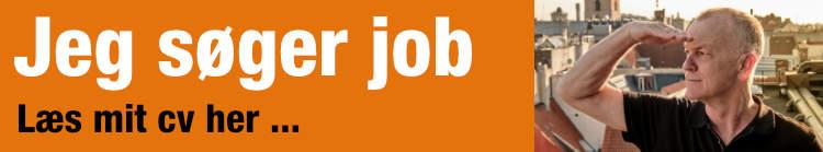 Jeg søger job