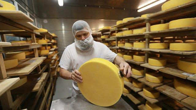 Новый завод по производству твердых сыров строится при поддержке властей Подмосковья