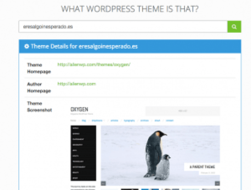 Theme - What WordPress Theme is That