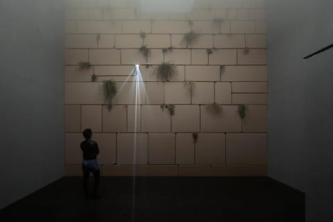 """אלונה רודה - """"מעל ומעבר"""", מראה הצבה המרכז לאמנות עכשווית (CCA), תל אביב צילום: אלעד שריג"""