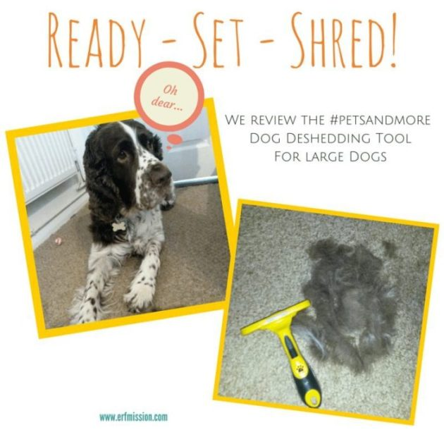 Shredding tool review