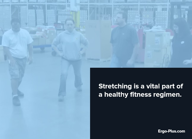 Stretching is a vital part of a healthy fitness regimen.