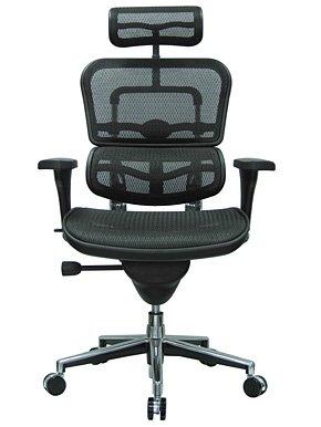 high end ergonomic office chair cost - Ergonomic Desk Chair