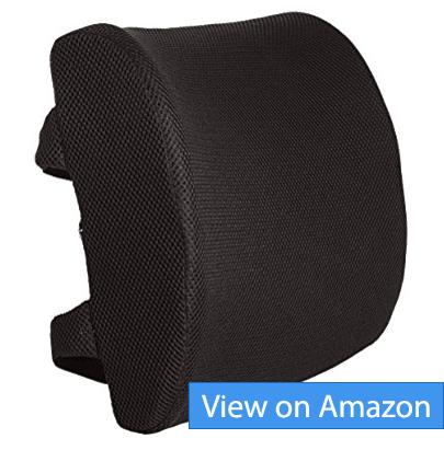 best lumbar support pillows and