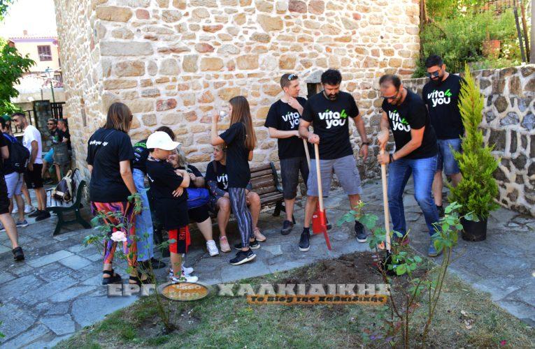 Εθελοντική δενδροφύτευση από την ομάδα του «Vita4you» στην Αρναία. (βίντεο φώτο)
