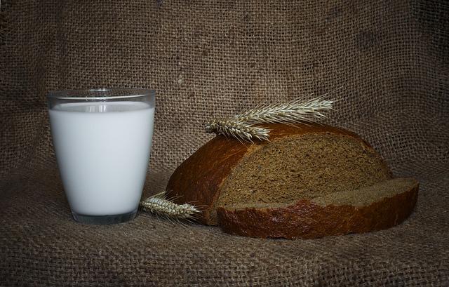 Lait de blé