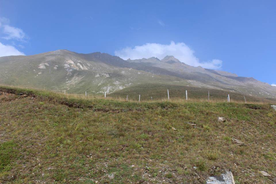 Descente Mont Cenis