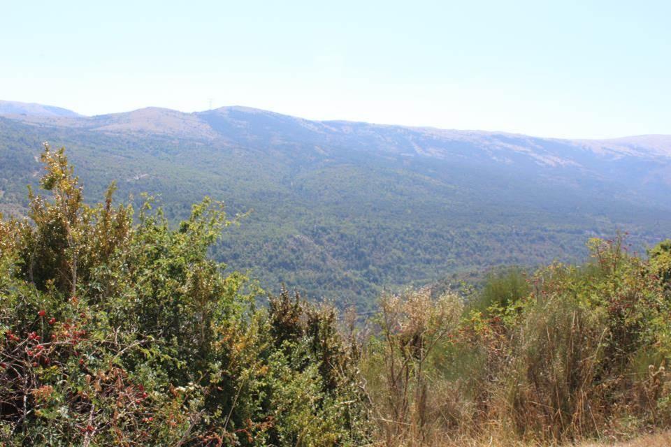 paysage col de Castellars