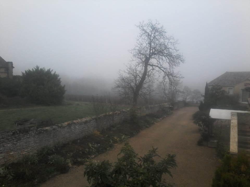 Le brouillard sur Saint Amour
