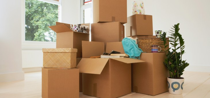 Big Hurdles: How to Conquer the Biggest Challenges of Moving Your Family