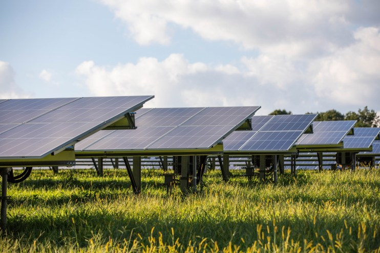A photo of solar panels lining a field.