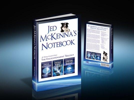 Cover Design   Jed McKenna's Notebook
