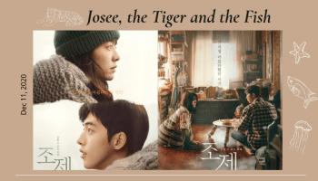 年末暖心催淚之作《喬瑟與老虎、魚》|南柱赫&韓志旼「耀眼CP」再譜唯美傷感愛戀