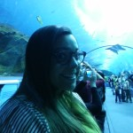 Bethany in the tunnel under the sharks...