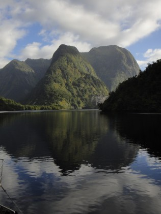 New Zealand. Crooked Arm, Doubtful Sound.