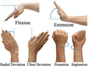 exercises for weak wrists