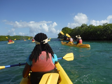 kayaking virgin islands