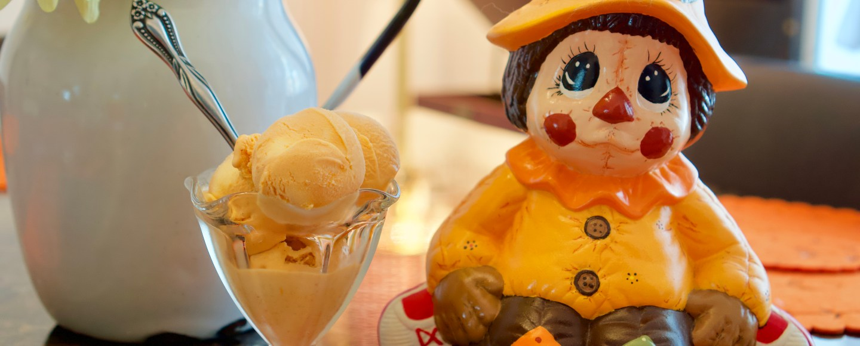 Easiest Pumpkin Ice Cream © 2018 ericarobbin.com   All rights reserved.