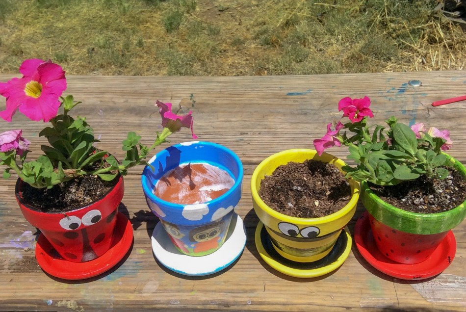 Painted Terra Cotta Flower Pots © 2019 ericarobbin.com   All rights reserved.