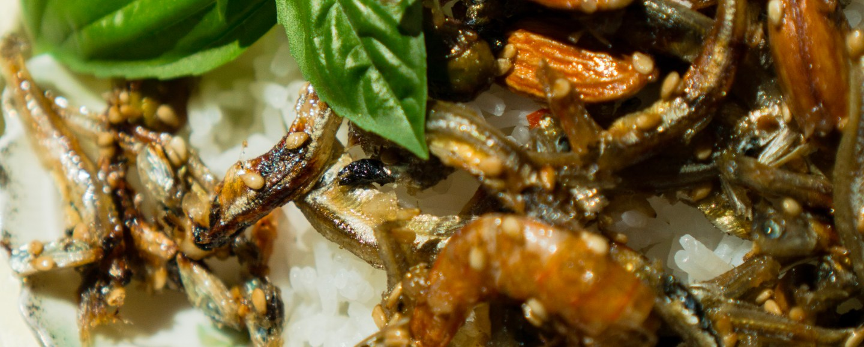 21 Garlic Stir-Fried Anchovies   Erica Robbin
