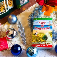 Tide and Punishment (Seaside Cafe Mystery #3) by Bree Baker