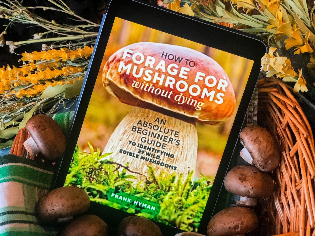 How to Forage for Mushrooms Without Dying by Frank Hyman | Erica Robbin