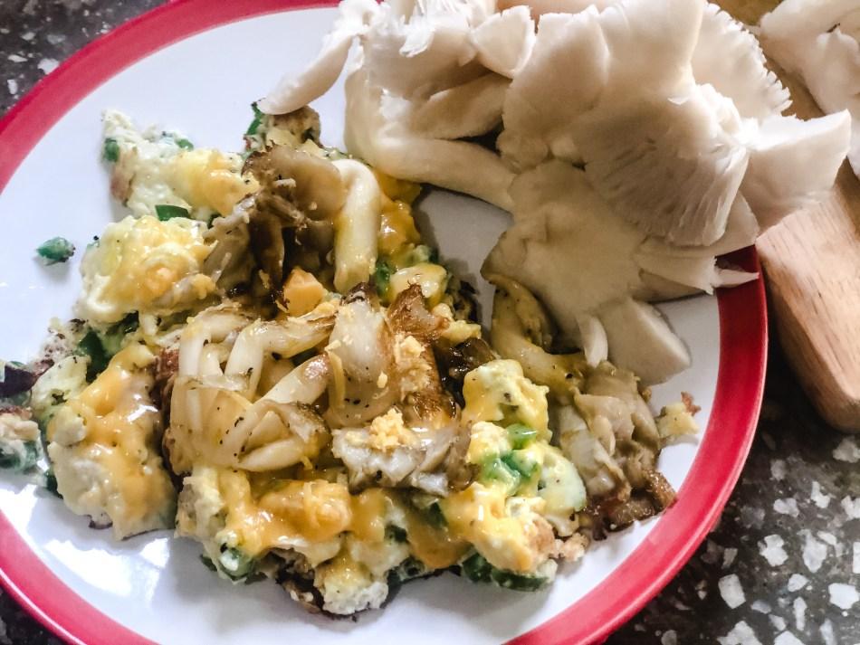 Morel Mushroom Bake | Erica Robbin