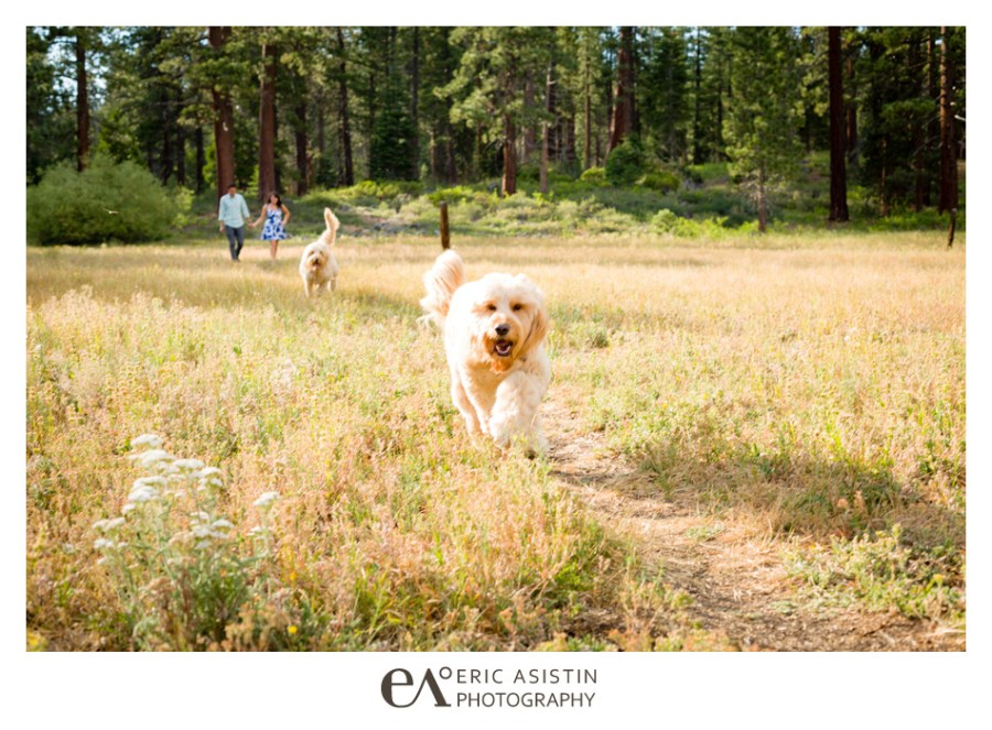 Lake-Tahoe-Engagement-Sessions-by-Eric-Asistin-Photography_003