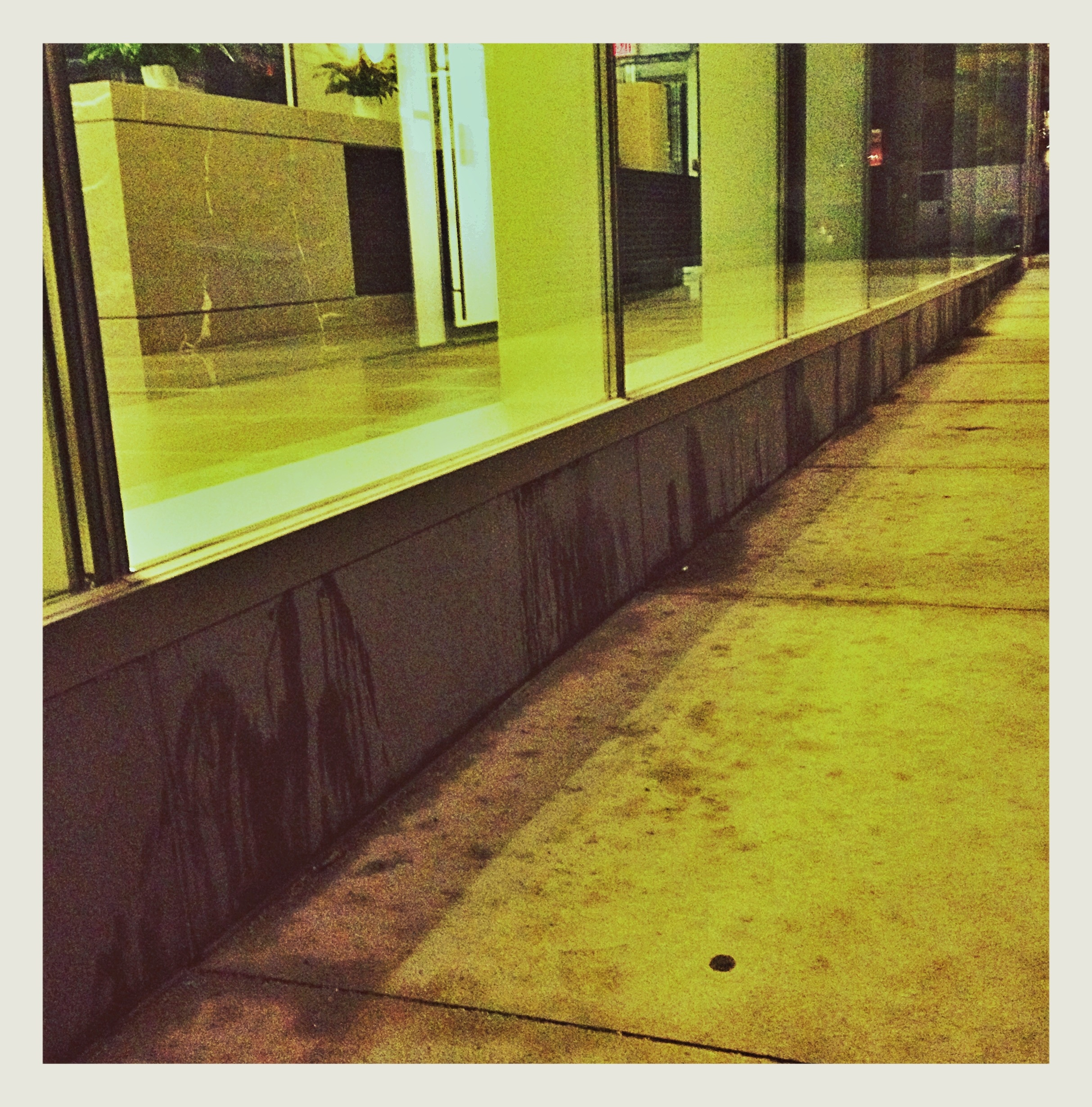 """Piss-Pot"" - Desperate dogs or lazy owners leave a urine stained walkway @ThompsonToronto Hotel & Suites, Toronto"