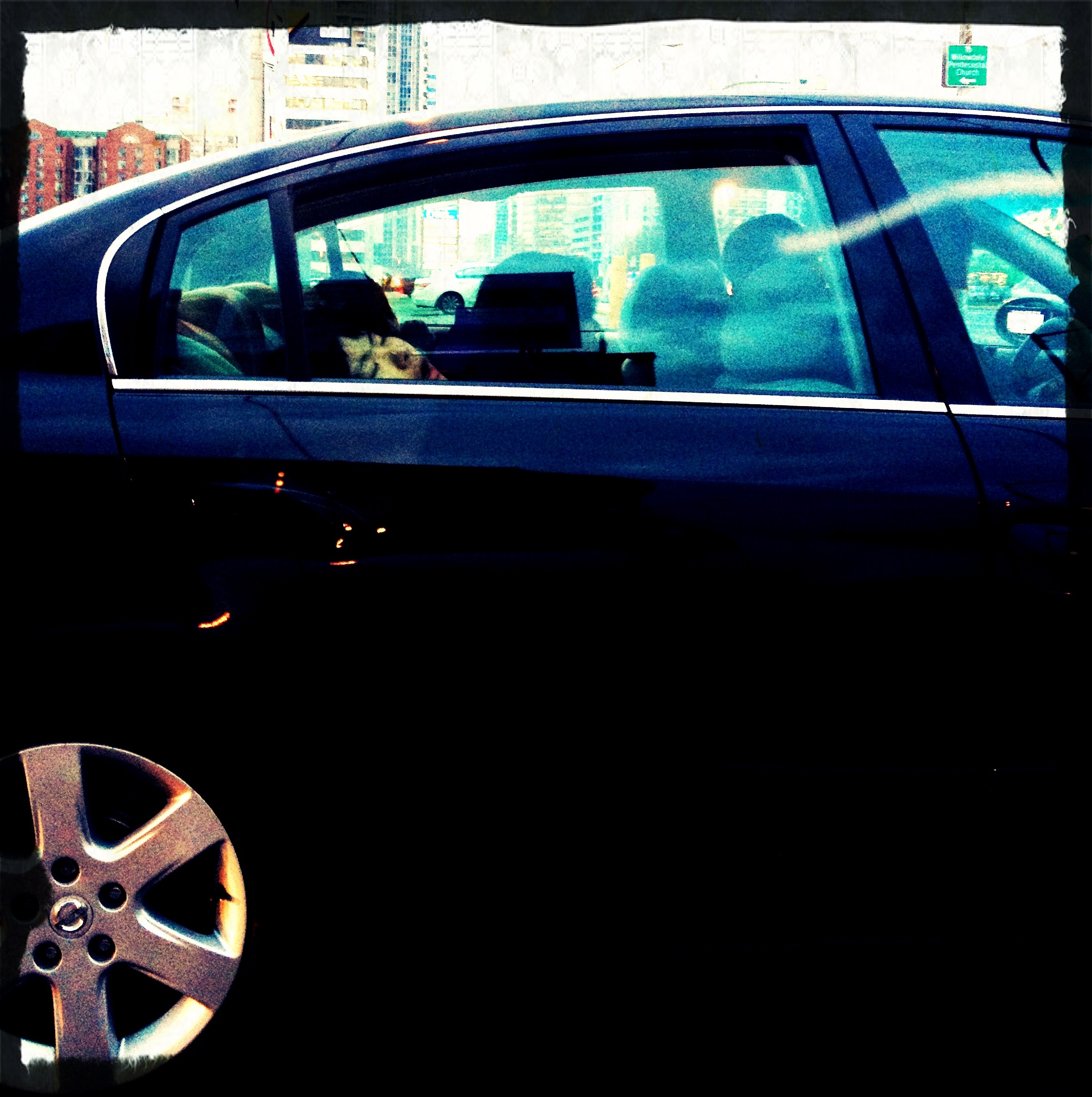 """""""Surfacing"""" - Car passenger naps in the rear-seat, Willowdale, Toronto"""
