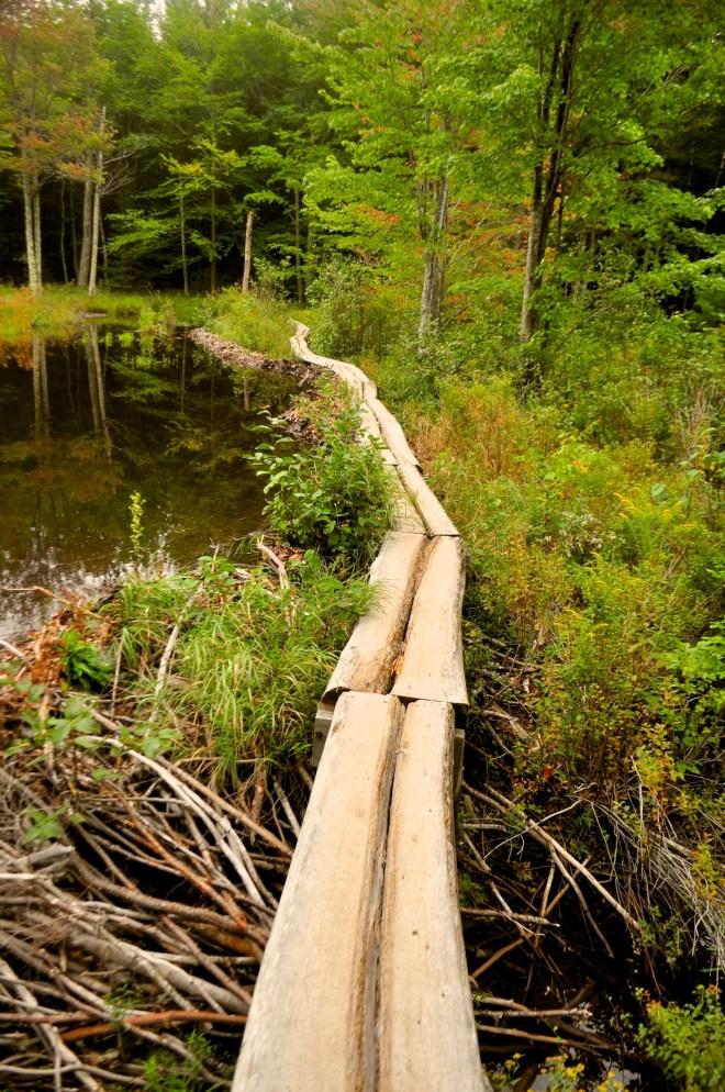 2012-09-07 Vacation - Maine-Acadia - Day 4 51