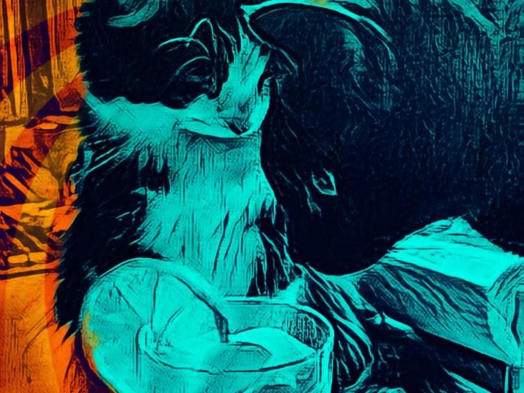 Cat 'n' Tonic