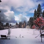 Fresh Snow in Incline Village, Lake Tahoe.