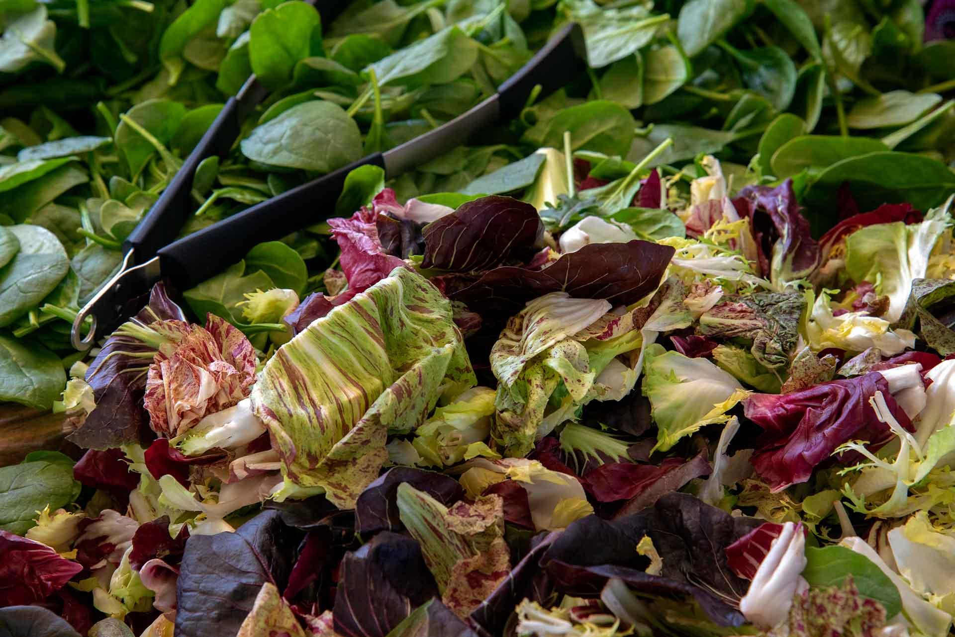 Lettuces, Santa Monica, CA