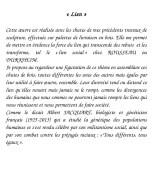 Texte_lien