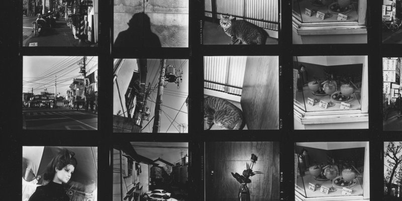 5 Lessons Daido Moriyama Has Taught Me About Street Photography