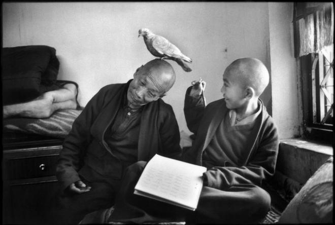 A boy monk learning how to become a master with his mentor. Martine Franck 1996 NEPAL. Bodnath. Shechen Monastery. Copyright Magnum Photos