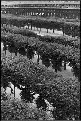 Henri Cartier-Bresson. FRANCE. 1959. Paris. The Palais Royal Gardens.