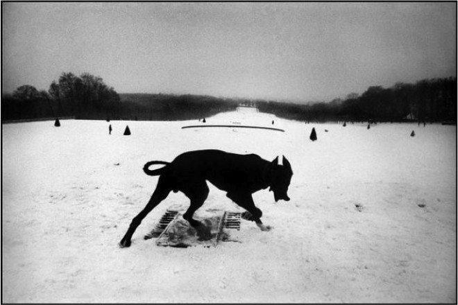 Josef Koudelka / FRANCE. Hauts-de-Seine. Parc de Sceaux. 1987.