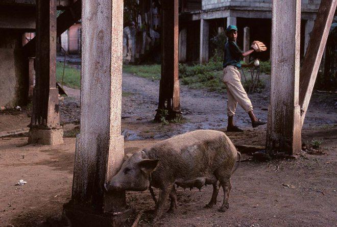 Central Cuba, 2000