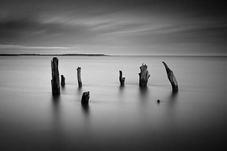© Nicholas Smith