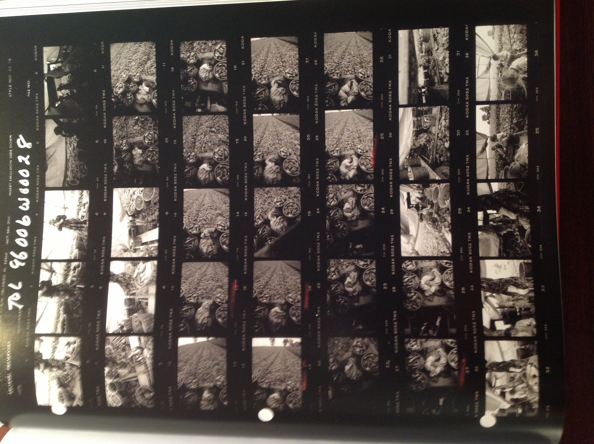 """Contact sheet from Larry Towell, """"Untitled"""", Ontario, Canada, 1996. © Larry Towell / Magnum Photos"""