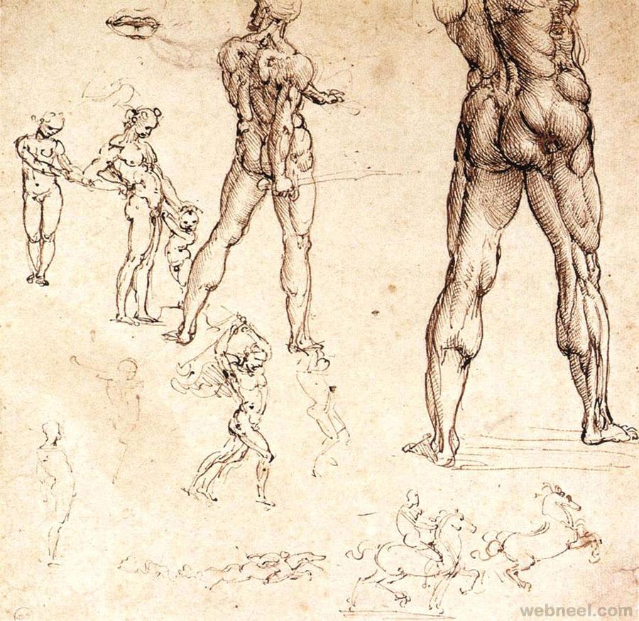 37-leonardo-da-vinci-anatomy.jpg