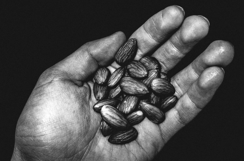 eric kim photography hands almonds