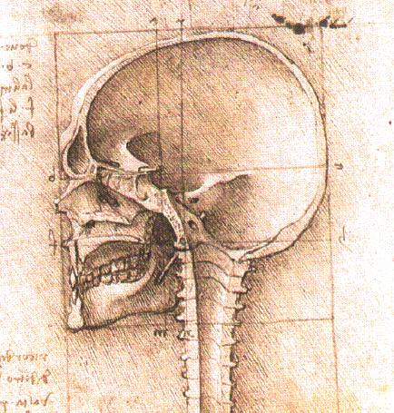 View_of_a_Skull_III