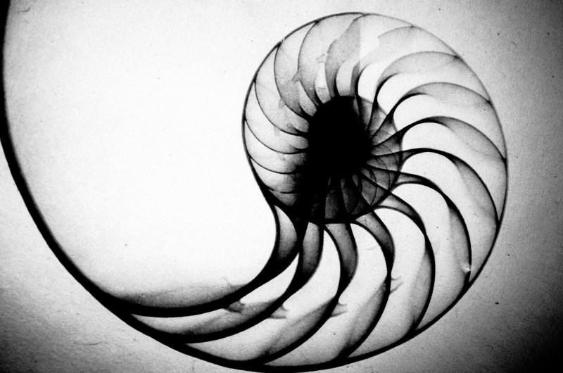 eric kim photography monochrom8