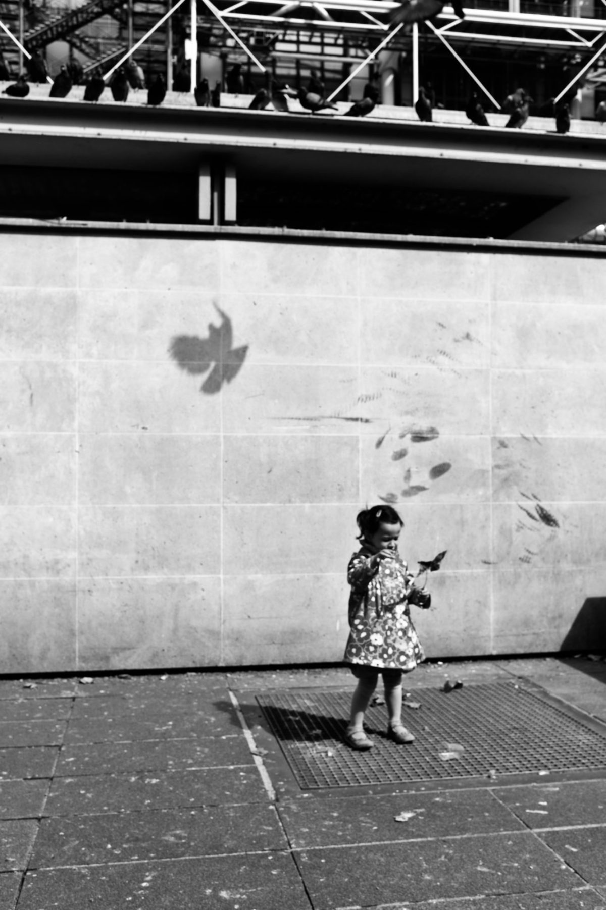 Girl with pigeon shadow. Paris, 2011